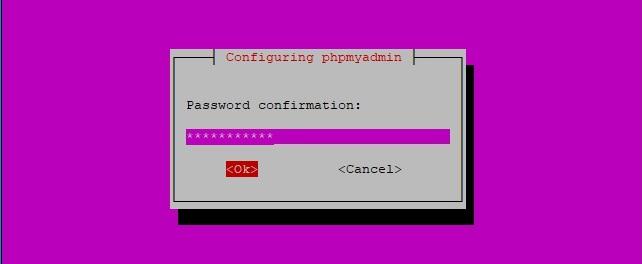 Confirm Password phpMyAdmin