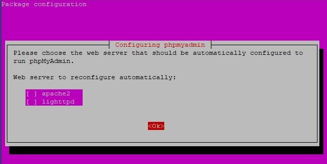 phpmyadmin install nginx