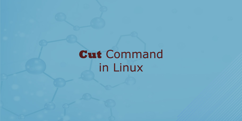 Cut Command in Linux