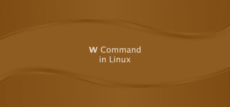 W Command in Linux