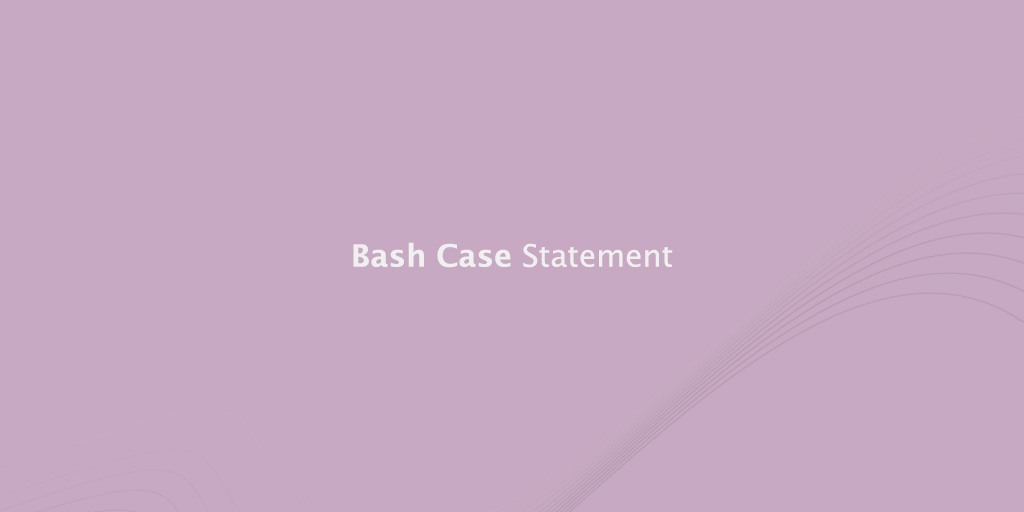 Bash Case Statement