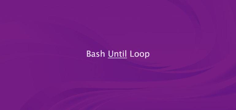 Bash until Loop