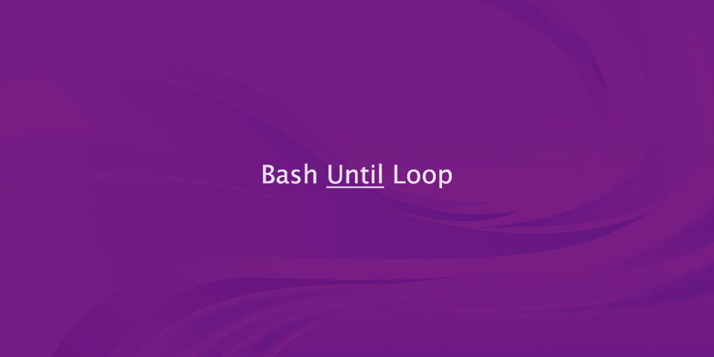 Bash until Loop