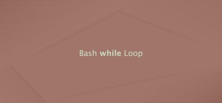 Bash while Loop