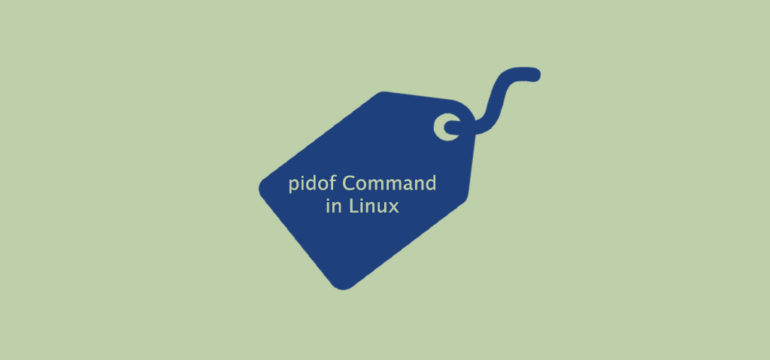 Pidof Command in Linux